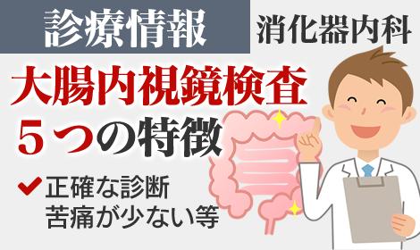 診療情報 大腸内視鏡検査5つの特徴(消化器内科)