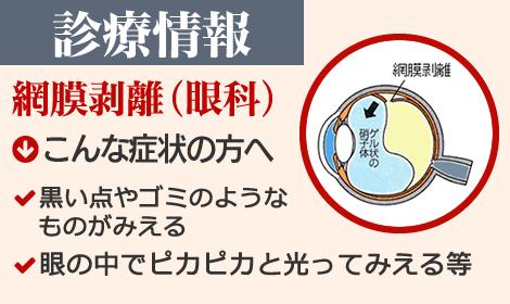 診療情報 網膜剥離(眼科)